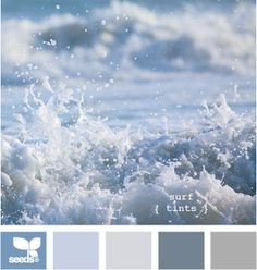 blue surf color palette for beach decor