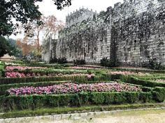 Castelo de Soutomaior, Pontevedra, Galicia Vineyard, Outdoor, Outdoors, Vine Yard, Vineyard Vines, Outdoor Games, The Great Outdoors