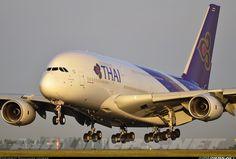 Thai Airways International, Airbus A380-841 aircraft picture