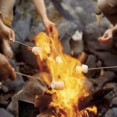 Roasting marshmallows at the camping on Pinterest ...