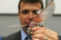 drone libelula, Los drones del futuro aprenderán a volar como los pájaros