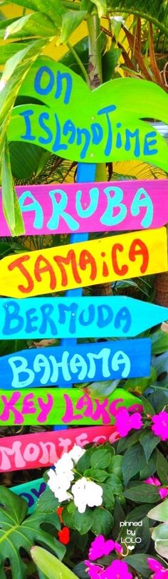 beach signs and meanings Caribbean Theme Party, Caribbean Carnival, Caribbean Party Decorations, Caribbean Decor, Memphis Design, Luau, Island Theme Parties, Jamaican Party, Cuban Party