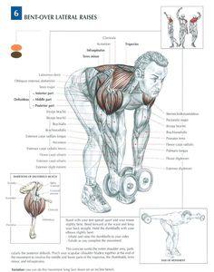 Delts(shoulder) & Upper back #workout #gymrat