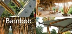 The materials of organic origin were used in the construction of buildingss ever since the ancient time. So, it is proven that are an excellent choice. Bamboo found its use in the construction of. Bamboo, Construction, Steel, Canning, The Originals, Architecture, Wood, Building, Arquitetura