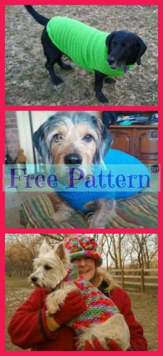 With the holidays so close and everyone excited, don't leave your dog out on the fun! Why not make him a Crocheted Dog Sweater for a great Christmas Crochet Dog Sweater Free Pattern, Crochet Baby Cardigan, Dog Pattern, Baby Blanket Crochet, Crochet Pet, Crotchet, Crochet Animal Patterns, Afghan Crochet Patterns, Stuffed Animal Patterns