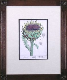 Cinara. Artichoke. | From a unique collection of prints and multiples at https://www.1stdibs.com/art/prints-works-on-paper/prints-works-on-paper/