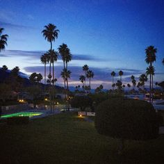Good night Palm Springs! Canyon View Estates