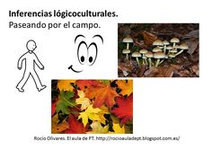 Inferencias lógicas y lógicoculturales :El sonido de la hierba al crecer
