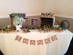 Showered with Love Bridal Shower. All Things Grow with Love. Green, white, ivory, coral, glitter, gold. Succulent Favors. The Succulent Source. Tulips, Baby's Breath, Stock. Burlap & Lace.  Rustic.