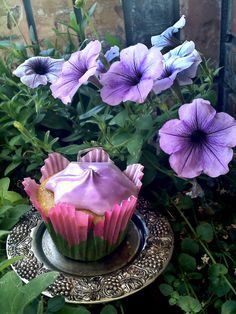 Becca Bakes Cupcakes check out my girl's cupcake blog!