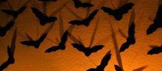 Decoración de Halloween nos Atacan los Murciélagos