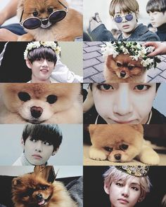 Show Taehyung an animal or a child and he's nuts in love instantly! | BTS