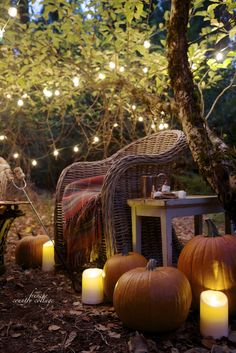 FRENCH COUNTRY COTTAGE: An autumn evening in the orchard