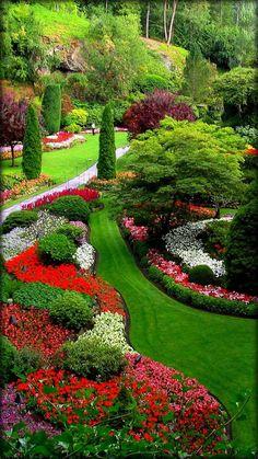 Jardim Papel Parede Animado