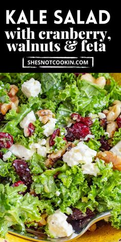Ready in 10 minutes, this easy Kale Salad is the best! It has delicious healthy ingredients with a lemony vinaigrette. Great as a side salad or on it's own. Quinoa Salad Recipes, Salad Dressing Recipes, Healthy Recipes, Creamy Potato Salad, Main Dish Salads, Chopped Salad, Side Salad, Easy Salads, Mediterranean Diet
