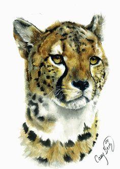 Cheetah by xbrightwingx.deviantart.com on @DeviantArt