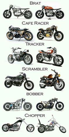Escolha!
