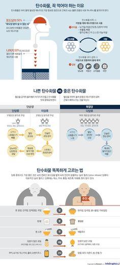 좋은 탄수화물 vs 나쁜 탄수화물 - 조선닷컴 인포그래픽스 - 인터랙티브 > 라이프