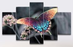 Butterfly Home Decor 5 Panel Canvas Art Canvas Art, Canvas Prints, Butterfly, Display, Home Decor, Floor Space, Decoration Home, Photo Canvas Prints, Billboard