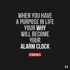 What is your purpose! Find a good woman, get married, and have children. Then do your best to create a strong family. That is your purpose. :)