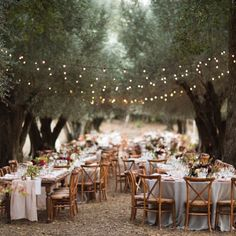 country forest wedding reception ideas with string lights wedding lights 20 Country Rustic Wedding Reception Ideas for Your Big Day - EmmaLovesWeddings Wedding Reception Ideas, Wedding Dinner, Tree Wedding, Wedding Venues, Wedding Tables, Wedding Night, Olive Wedding, Country Barn Weddings, Wedding Country