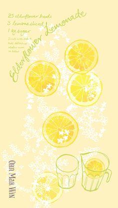 Refreshing summer drink made from elderflowers - They Draw and Cook. Lemons lemonade. Ohn Mar Win