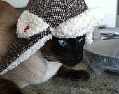 The Trapper Hat - cold weather hat for dogs - or I guess for cats too.