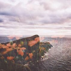 Photo illustration by Bright flowers pop against moody cliffs in artist Heather Raymond's ( Bright Flowers, What A Wonderful World, Double Exposure, Photo Illustration, I Fall In Love, Pretty Pictures, Wonders Of The World, Believe, Skyline