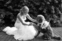 pets at weddings we ♥ this! moncheribridals.com