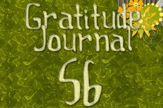 Gratitude Challenge Revisited Day 56 - News - Bubblews