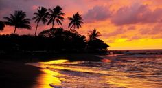Hawaii Four Islands with Mayflower Tours.