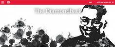 The (University of Maryland) Diamondback used Washington Post's Pagebuilder to transform its series on Jayson Blair's tenure as a student editor.
