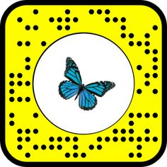 Snap to Unlock! White Sleeveless Dress, Snapchat Filters, Blue Butterfly, Lenses, Photography, Photograph, Lentils, Photo Shoot, Fotografie