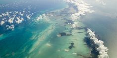 Urge Belize to Protect its Marine Parks from Oil and Gas Mining