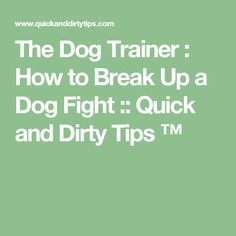 The Dog Trainer : How to Break Up a Dog Fight :: Quick and Dirty Tips ™