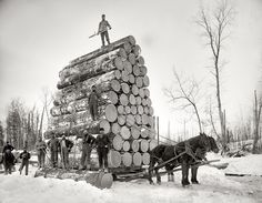 'Big Load of Logs on a Horse Drawn Sled in Michigan, CA, 1899 - from AllPosters Vintage Pictures, Old Pictures, Old Photos, Funny Pictures, Funny Images, Funny Pics, Shorpy Historical Photos, Into The West, Draft Horses
