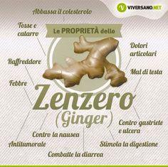 Proprietà Zenzero