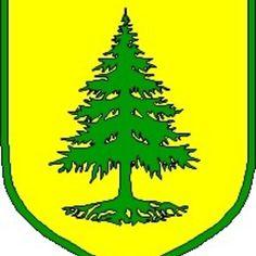 Coat of Arms of Võru, Estonia. Estonia Flag, City Logo, Coat Of Arms, Superhero Logos, Royalty, Symbols, Cities, Coats, Art