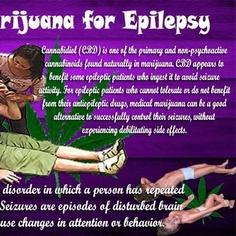 Cannabis for Epilepsy