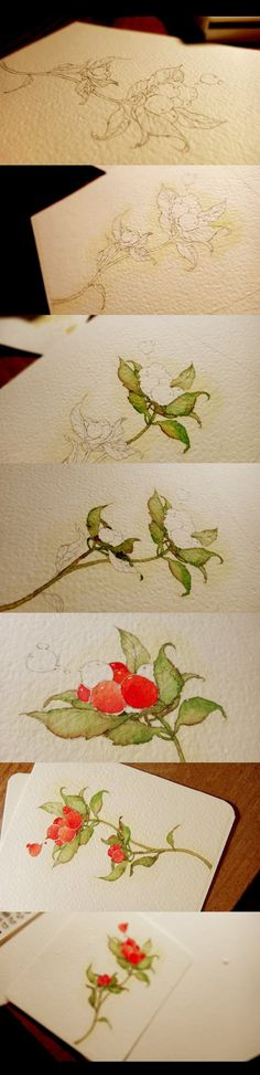 Step by step watercolor rose