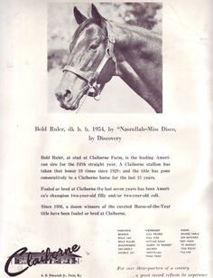 bold ruler pedigree | Below are ten advertisements that I found especially interesting and ...