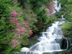 Image result for waterfalls
