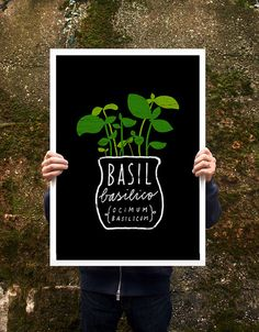 "Basil Herb Italian Green Kitchen Poster print  20""x27"" - archival fine art giclée print. $85.00, via Etsy."