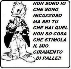 AAAAAAAHHHH,AHHHHHH!!! O COM'è VERO!!! Verona, Italian Language, Quotations, Lol, Messages, Smile, Cartoon, Comics, Memes