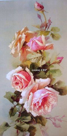 Glorious Pinkish Peach Roses Catherine Klein Half Yard Long sold by victorian rose prints on etsy