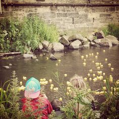 My first ever duckrace! You know your a big kid when you enjoy it just as much as the little ones.  E. x  #charity #waterofleith #stockbridgeduckrace #stockbridgeduckrace2015 #stockbridge #edinburgh #stockbridgeedinburgh #scotland