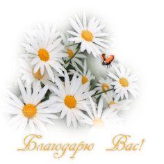Благодарите и получайте желаемое! - http://www.shinylife.ru/blagodarite-i-poluchajjte-zhelaemoe/