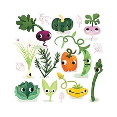 Jana  Curll Illustration - jana, curll, jana curll, commercial, education, fiction, young reader, picture book, mass market, value, sweet, cute, young, photoshop, digital, illustrator, vegetables, food, beetroot, pumpkin, beans, green beans, asparagus, lettuce, peppers, garden, growing,