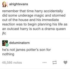 He truly is James Potter's son