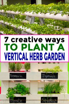 I love these vertical herb garden ideas. Im going to try the herb garden in a pallet since its so cheap to make and will fit in my small garden. #fromhousetohome #herbgarden #verticalherbgarden #gardening  #herbs